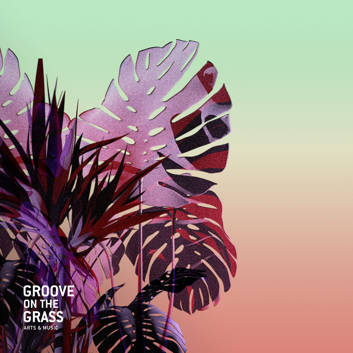 Groove on the Grass (Coming Soon)